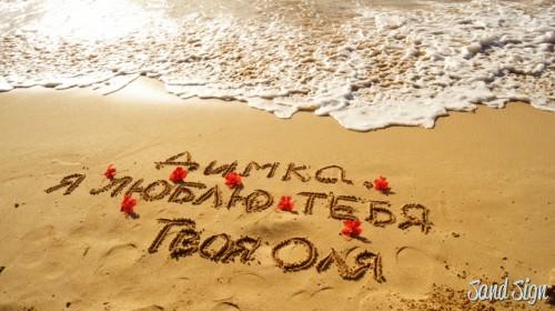 Димка, я люблю тебя! Твоя Оля