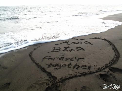 Алла+Вася= forever together