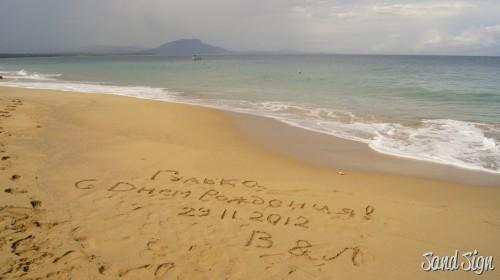 Гулька,с Днем Рождения!29.11.2012 В&Л
